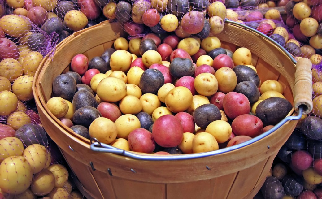Potatoes contain healthy carbs and other nutrients