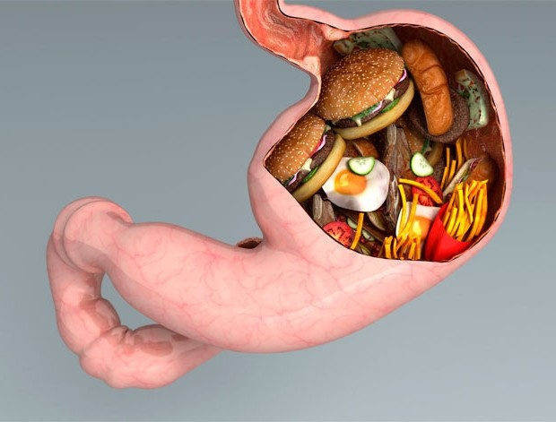 Bad Cholesterol level paves way for diseases